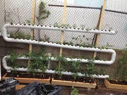 Patio Vegetable Garden Ideas Balcony Vegetable Garden Ideas