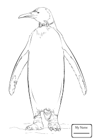 Penguin Coloring Pages Penguins Birds Baby Penguin Coloring Pages For Kids Colorpages7 Com by Penguin Coloring Pages