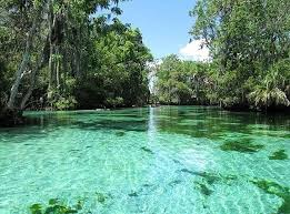 Florida waterfalls images 27 beautiful springs and waterfalls within driving distance of orlando jpg