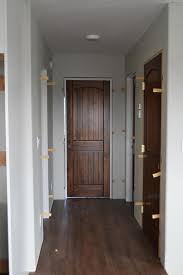 Interior Doors Pictures Staining Interior Doors White Woodworking Projects
