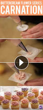 best 20 cupcake decorating tutorial ideas on pinterest u2014no signup