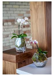 Decorate A Vase 5 Ways To Decorate Your Mantel With Glass Vases U2013 46 U0026 Spruce