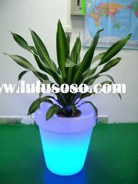 decorative indoor plants decorative indoor plant pots indoor decorative indoor hanging flower