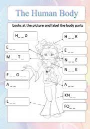 english teaching worksheets human body