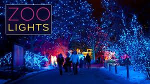 get my perks half admission at denver zoo lights