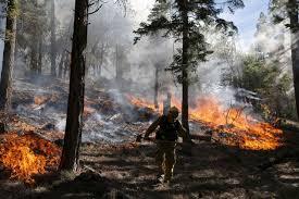 Wildfire Social Media App by California Wildfire San Bernardino Lake Fire Photos Time Com