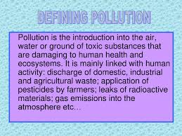 types of purple types of pollutions powerpoint slides