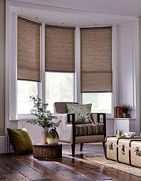 house window blinds with design ideas 5582 salluma
