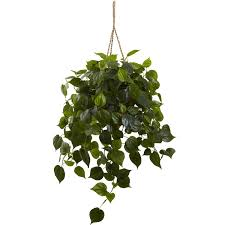 philodendron philodendron hanging basket uv resistant indoor outdoor silk