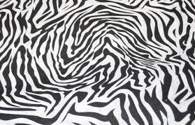 zebra tissue paper print tissue paper box co