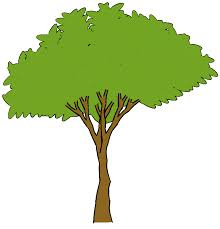 pine trees free clip free clip on