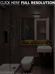 Victorian Bathroom Designs by Victorian Bathroom Designs Eurekahouse Co Bathroom Decor