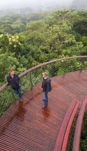 Hidden Canopy Treehouse Monteverde by 26 Best Tree Top Zoo Images On Pinterest Walkway Tree Canopy