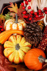thanksgiving fall harvest suzanne landry fresh food chef