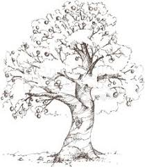 old apple tree illustration vintage clip art image u2013 autumn