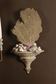 dried sea fans for sale decorative white coral sea fan on acrylic base beach home decor
