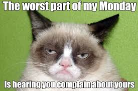 Frowning Meme - grumpy cat grumpy cat grumpy cat quotes and humor
