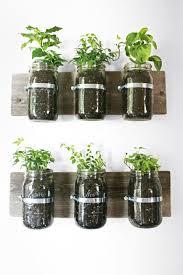 Office Plants 11 Incredible Ways To Use Indoor Plants Glass Jars Mar14 Loversiq