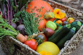food preservation tips that will protect your survival garden and