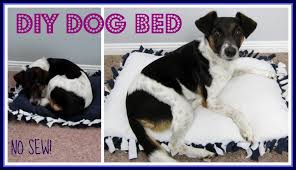 How To Make A Dog Bed How To Make A Dog Bed Without Sewing 10 Dog Beds U2013 Gallery