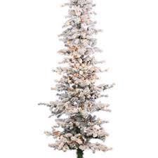 christmas trees pencil alpine u2013 howell u0027s floral