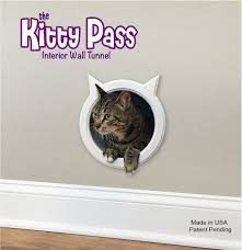 Cat Door For Interior Door Amazon Com The Kitty Pass Wall Entry Cat Door Cat Door Tunnel