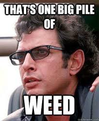 Super Bowl Weed Meme - americans smoke over 100 000 pounds of marijuana for 2014 superbowl