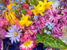 image of spring flowers spring flowers from the garden wallpapers hd wallpapers id 5631