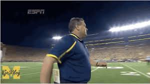 brady hoke resume if you pretend you are a statue do not be surprised when you erode
