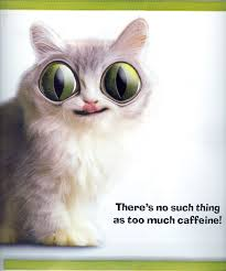 Too Much Coffee Meme - theres no such thing as too much caffine
