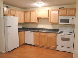 two bedroom apartments in nyc manhattan apartments for rent under 1 000 home images goodlooking