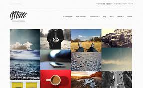 25 best photo gallery wordpress themes pixel curse