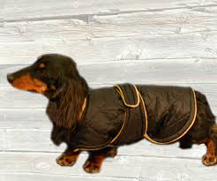 Winter Dog Coat Custom made with quilted nylon and tummy panel