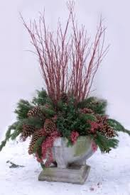 Christmas Decorations For Outdoor Containers by 137 Best Woody Winter Florals For Outdoors Images On Pinterest