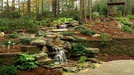 Backyard Waterfall Waterfall Backyard Video Hgtv