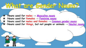 ppt slides english gender nouns masculine feminine neuter common