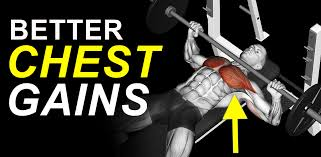 How To Bench Press Alone - vince delmonte u0027s muscle building secrets and programs vince
