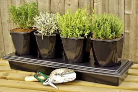 herbs planter 4 pot herb planter with free seeds