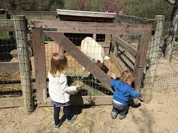 Avila Beach Barn Adventure To Avila Valley Barn In San Luis Obispo To See The Baby