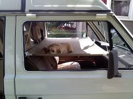 best 25 dog hammock ideas on pinterest dog cover for car dog