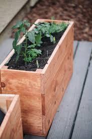 best 25 small herb gardens ideas on pinterest indoor herbs diy