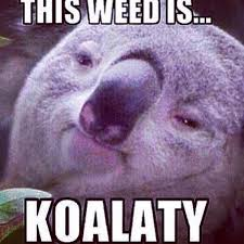 Game Over Meme - medicating on twitter game over best cannabis meme ever