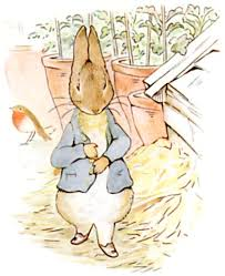 the tales of rabbit the tale of rabbit beatrix potter bedtime stories