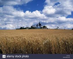Wetter Bad Camberg Kreuzkapelle Hinter Einem Kornfeld Landwirtschaft Wolkenhimmel