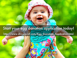 top 4 reasons to donate your eggs by chicagoivf