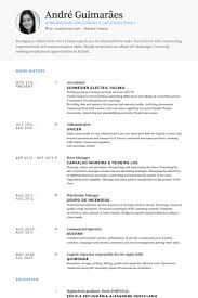 Accountant Sample Resume by Accountant Resume Samples Visualcv Resume Samples Database