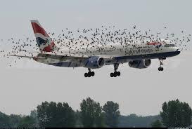 boeing 757 236 british airways aviation photo 0620854