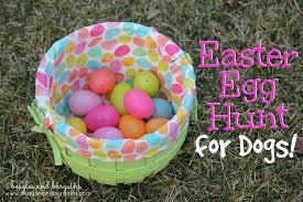 easter egg hunt eggs easter egg hunt for dogs