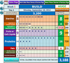 Diet Tracker Spreadsheet Excel Workout Tool For Beast