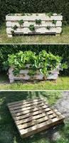 garden ideas using pallets interior design